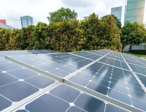 Welke zonnepanelen subsidies zijn er in 2020 voor bedrijven?